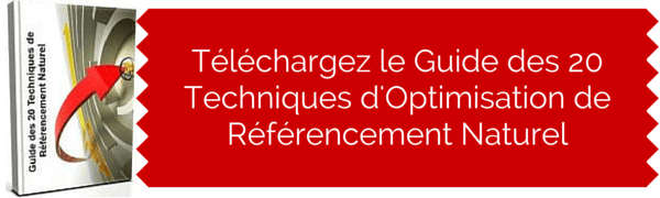 guide-referencement-naturel